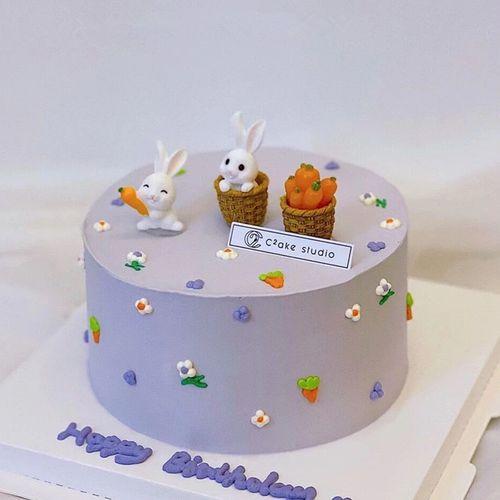 小兔子蛋糕装饰摆件迷你胡萝卜箩筐小红书同款生日甜品台装饰用品