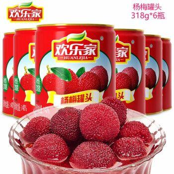 欢乐家新鲜杨梅罐头318g*6罐整箱 糖水水果罐头方便
