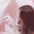 紫露凝香慕妍的百度云分享